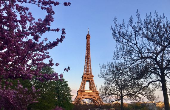 From the Cafes to the Tower, Paris Met My Expectations