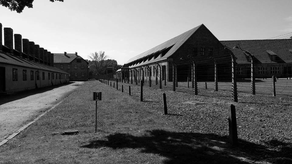 a research on birkenau auschwitz Research scholars at the auschwitz-birkenau state museum estimate that approximately 11 million people were murdered in auschwitz, of whom a million were jews.